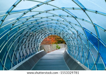 Structural glass facade curving roof and the wooden pathway inside. Abstract architecture fragment. Anyang art park in south korea #1553329781