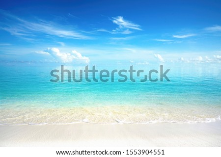 Beautiful sandy beach with white sand and rolling calm wave of turquoise ocean on Sunny day. White clouds in blue sky are reflected in water. Maldives, perfect scenery landscape, copy space. Royalty-Free Stock Photo #1553904551