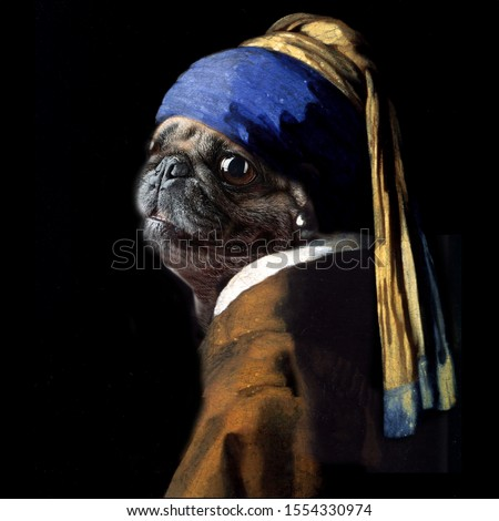 """Vermeer spoof  of """"Girl with a Pearl Earring"""" now, """"Pug with a Pearl Earring"""" using my daughter's pug dog photo morphed into the correct position for a similar portrait."""