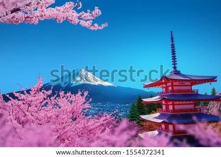 Sakura at the Churito Red Pagoda View of Mount Fuji and Yamanashi in Japan.