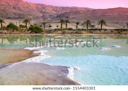 Sunrise over Dead Sea. Beautiful nature. Nature landscape. Dead sea salty shore in the morning. Royalty-Free Stock Photo #1554403301