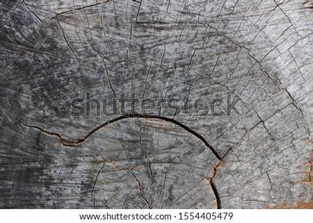 Cross-cut wood grain, wood grain background, cracked wood grain #1554405479