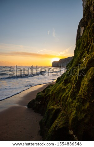 Waves lapping at the shoreline during a golden sunrise at the beach - Botany Bay  #1554836546