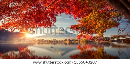 Colorful Autumn Season and Mountain Fuji with morning fog and red leaves at lake Kawaguchiko is one of the best places in Japan #1555043207