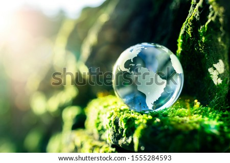 Glass globe in the in nature concept for environment and conservation #1555284593