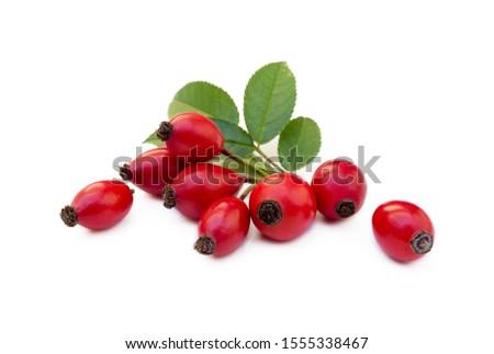 Ripe rose hip isolated on white background #1555338467