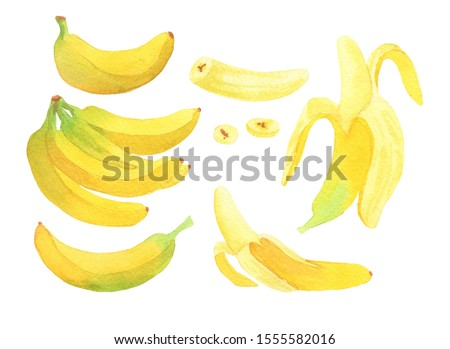 Set of yellow bananas on a white background #1555582016