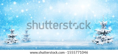 Natural winter background. Winter trees background. Winter forest background desktop image. Space for text   Winter trees background. Nature. Christmas tree .