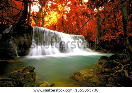 Hot Springs Onsen Natural Bath Surrounded by red-yellow leaves. In fall leaves fall .Waterfall among many foliage, In the fall leaves Leaf color change.soft focus.
