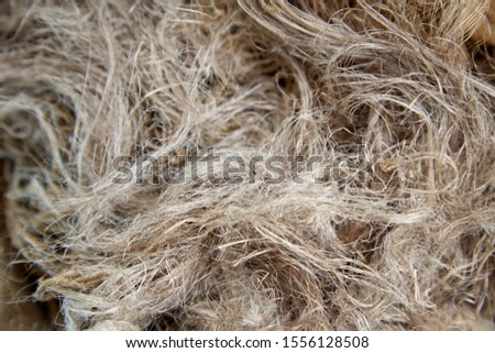 Dry flax fibers, production of linen fabrics - texture for the background #1556128508