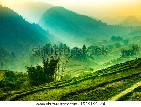 Foggy mystical rice fields in the lush green mountains of Sapa Valley Northen Vietnam #1556169164
