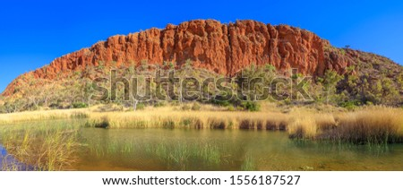 Spectacular sandstone wall Glen Helen Gorge with waterhole on Finke River. Panorama of Tjoritja - West MacDonnell Ranges, Northern Territory, Central Australia. Australian outback along Red Centre Way Royalty-Free Stock Photo #1556187527