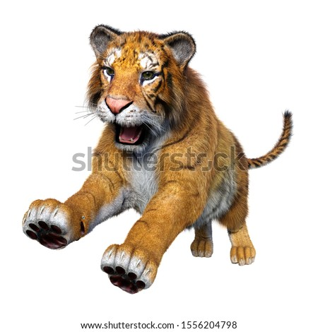 3D rendering of a big cat tiger isolated on white background #1556204798