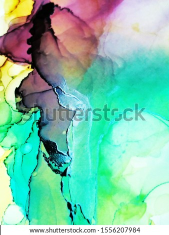 Alcohol Ink Holi Print. Alcohol Ink Art. Multicolor Stone Marble Texture. Colorful Paint Texture. Rainbow Alcohol  Ink Texture. Liquid Artistic Painting. Watercolor Splash. #1556207984