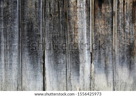 Wood Texture And Wood Background #1556425973