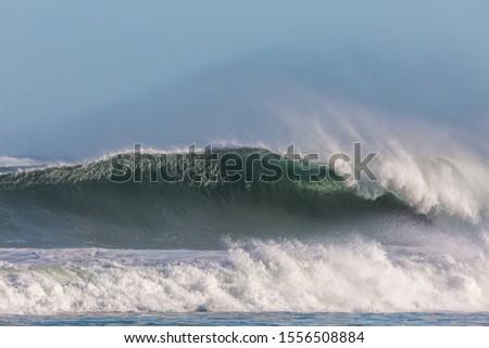 huge tsunami wave crashing close to shore