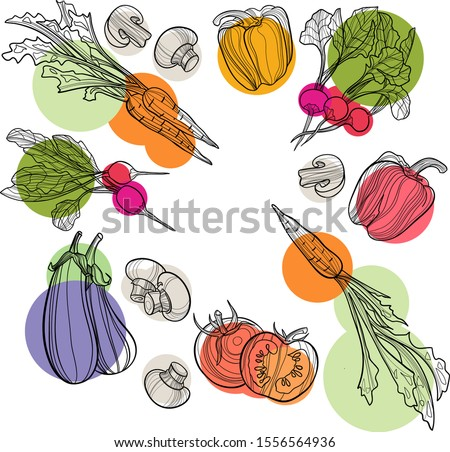 Vegetable set in vector. Harvest and Thanksgiving fruit of nature, food collection for restaurants, menus, posters and grocery bags: bell pepper, eggplant, radish, mushroom, carrot. Graphics and color Royalty-Free Stock Photo #1556564936