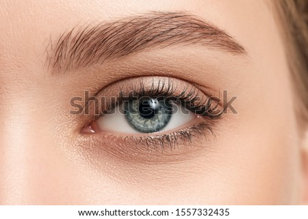 Young woman with beautiful eyebrows, closeup Royalty-Free Stock Photo #1557332435