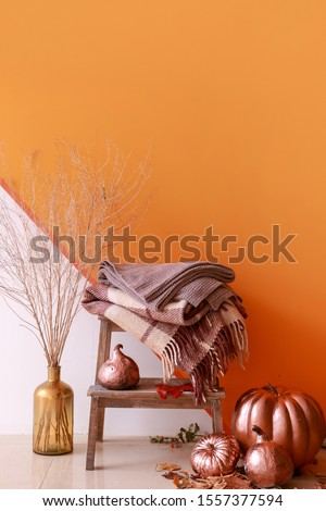 Painted pumpkins with plaids near color wall #1557377594