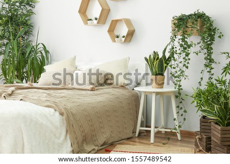 Stylish interior of bedroom with green houseplants Royalty-Free Stock Photo #1557489542
