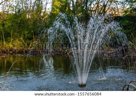 Magic pond with cascading fountain on emerald surface of water on blurry background of evergreens. Selective focus. Autumn landscape in evergreen garden. Nature concept for design. #1557656084