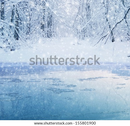 winter in the forest - lake and snowy path Royalty-Free Stock Photo #155801900