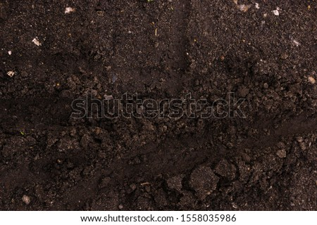 Dirt, imprints in the ground. Close-up. #1558035986