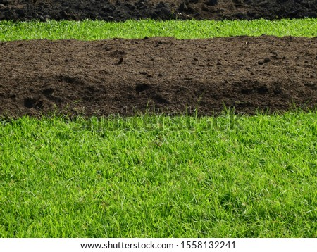 Pile of soil on the ground with green grass  #1558132241