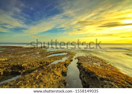 coral reefs on the beach and mauve in the western horizon at uluwatu temple bali Indonesia #1558149035