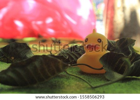 this photo is  rubber duck #1558506293