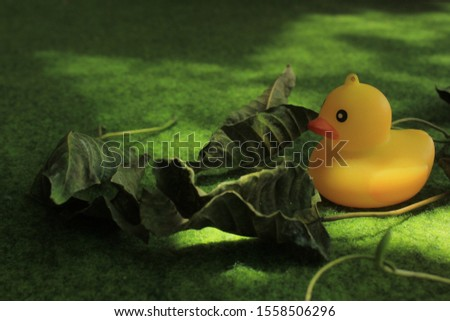 this photo is  rubber duck #1558506296