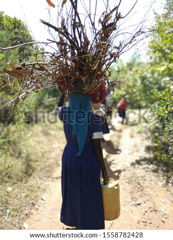 woman carries firewood and water #1558782428