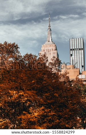 New York City, New York / United States of America - October, 10, 2019: The Empire State Building is seen in Midtown towering over the fall leaves of Madison Square Park.  #1558824299