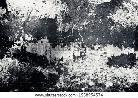 Cracked and peeling paint old wall background. Monochrome classic grunge texture #1558954574