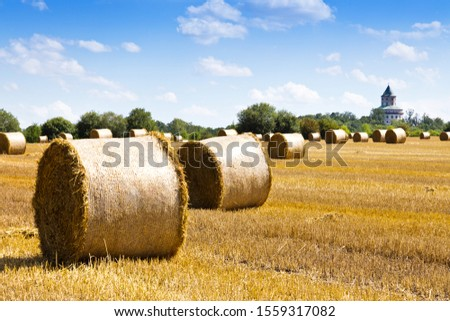 barley field after harvest with straw, Humprecht castle, Bohemian Paradise, Czech Republic #1559317082