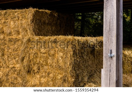 stack of hay in a hay barn #1559354294