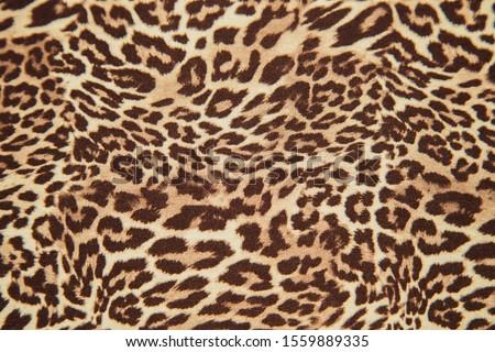 Leopard background pattern, animal print, leopard textile design, fabric. Leopard skin seamless pattern. #1559889335