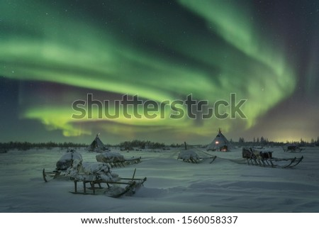 Frosty clear night and bright  Aurora Borealis in the camp of reindeer herders on the Yamal Peninsula. Russia. Royalty-Free Stock Photo #1560058337