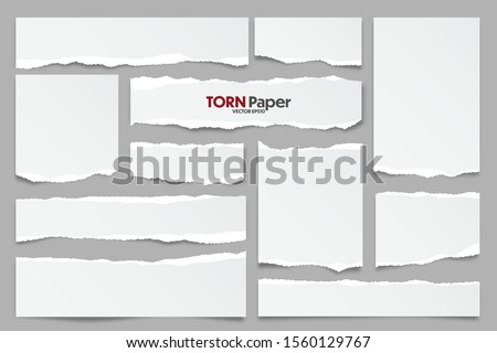 White ripped paper strips collection. Realistic paper scraps with torn edges. Sticky notes, shreds of notebook pages. Vector illustration. Royalty-Free Stock Photo #1560129767