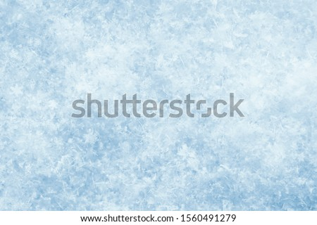 Macro photo of snow texture, top view. Abstract background Royalty-Free Stock Photo #1560491279