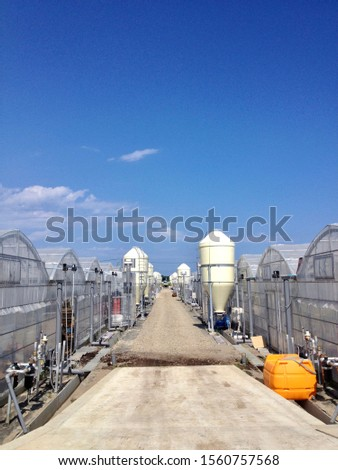 Large scale facility horticulture and sky #1560757568