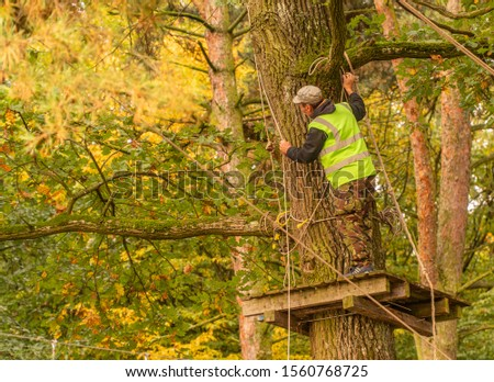 ukraine village garaja on October 6, 2019 teenagerl running distance on rope trail in autumn forest #1560768725