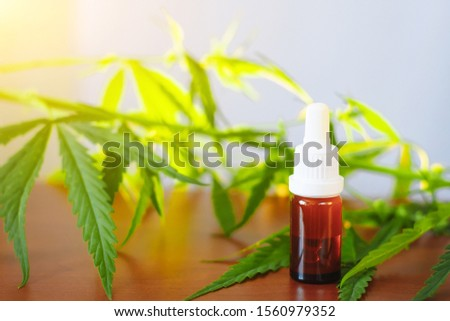 Medicinal cannabis CBD with extract oil in a bottle. Concept of herbal alternative medicine, CBD oil. Glass bottles with hemp oil among hemp leaves #1560979352