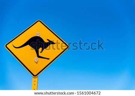 Kangaroo road sign in Australia. Iconic, yellow, diamond-shaped sign on blue sky background with copy space