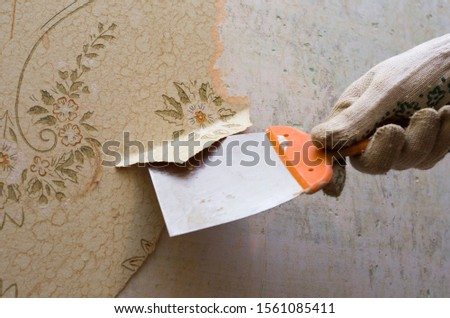 Preparing the wall for painting or sticking new wallpaper. Man in gloves with a scraper in the process of removing old wallpaper. wetted with a special solution surface #1561085411