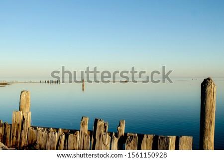 bodies of water bays beaches birds #1561150928