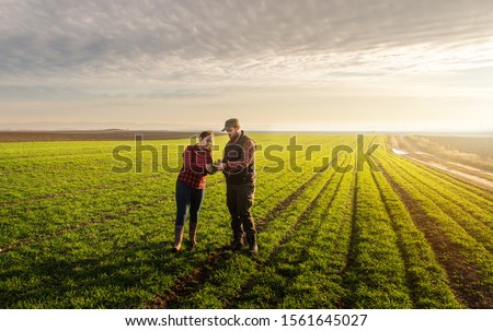 Young farmers examing  planted wheat in the fields Royalty-Free Stock Photo #1561645027