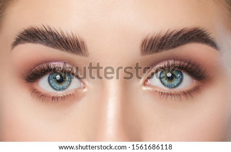 Beautiful woman with long eyelashes, beautiful make-up and thick eyebrows. Beautiful blue eyes close up. Looking at the camera. Makeup and Cosmetology concept. Royalty-Free Stock Photo #1561686118