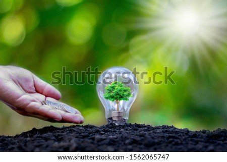 The tree grows on a pile of coins in a light bulb. Energy saving and environmental protection concepts on Earth Day. #1562065747