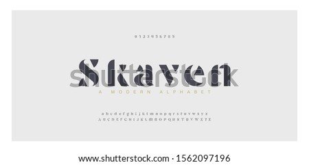 Elegant awesome alphabet letters font and number. Classic Lettering Minimal Fashion Designs. Typography fonts regular uppercase and lowercase. vector illustration #1562097196